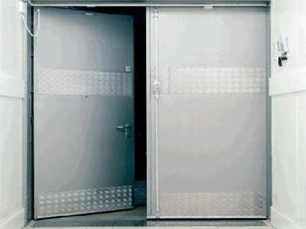 steeldoor1b.jpg